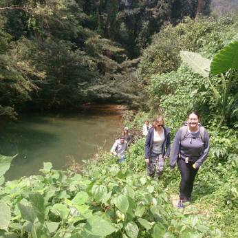 Trekking through the green valley